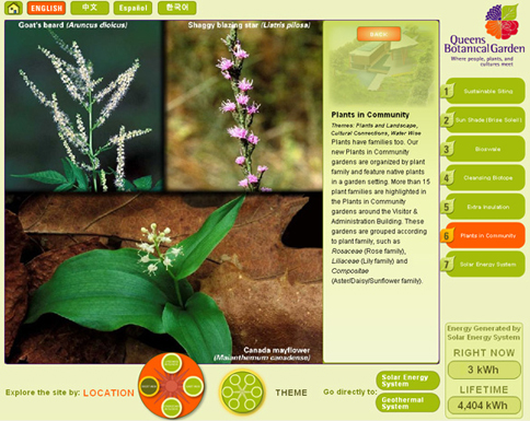 Detailed information about the plants in the garden.